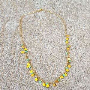 J. Crew long necklace